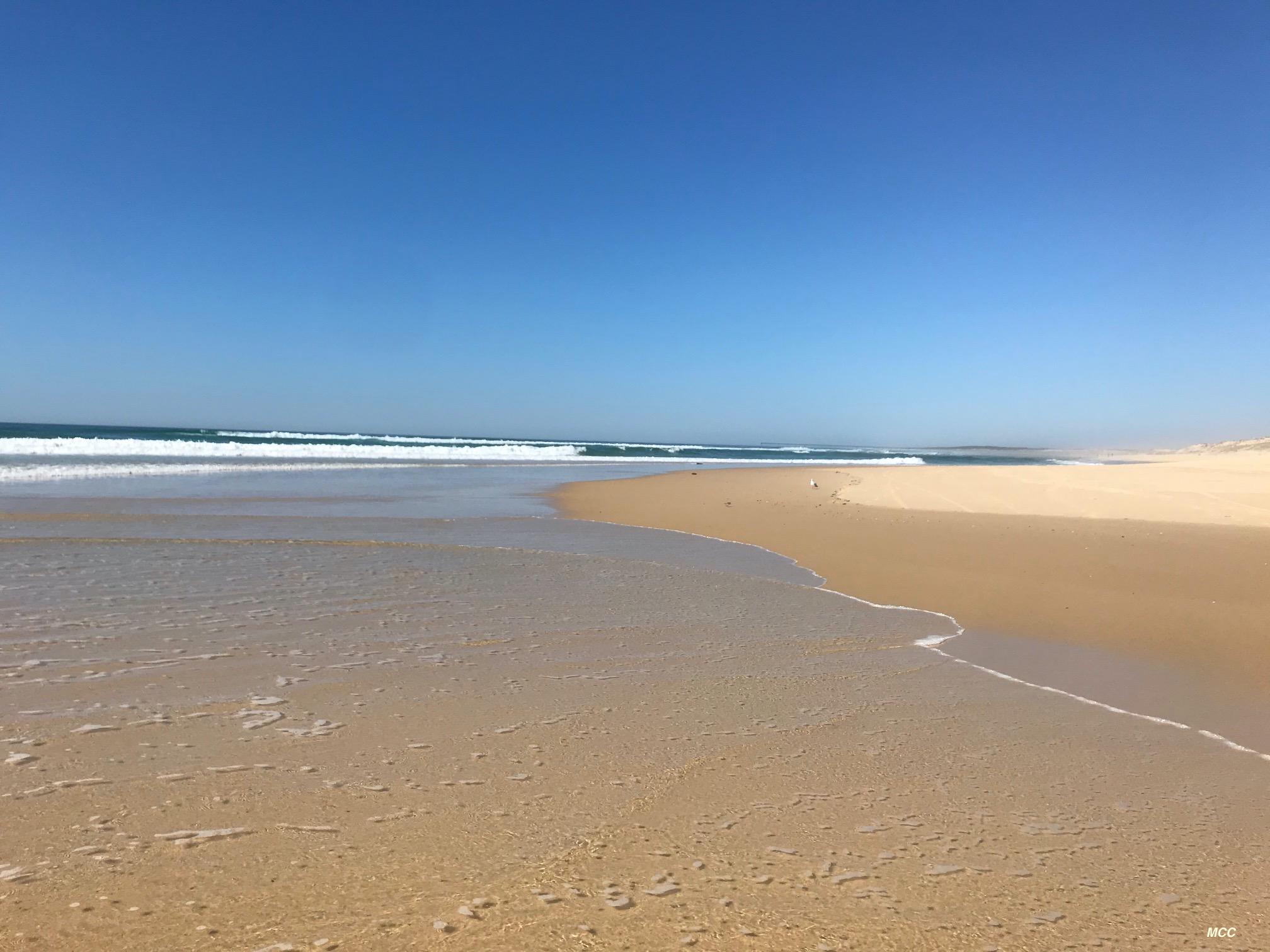 ocean-plage-deserte